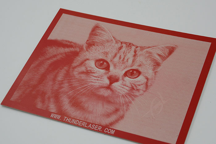 cat Double-Color-Abs laser engraver