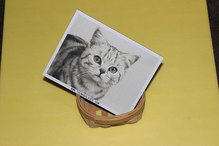 car photo laser engraver