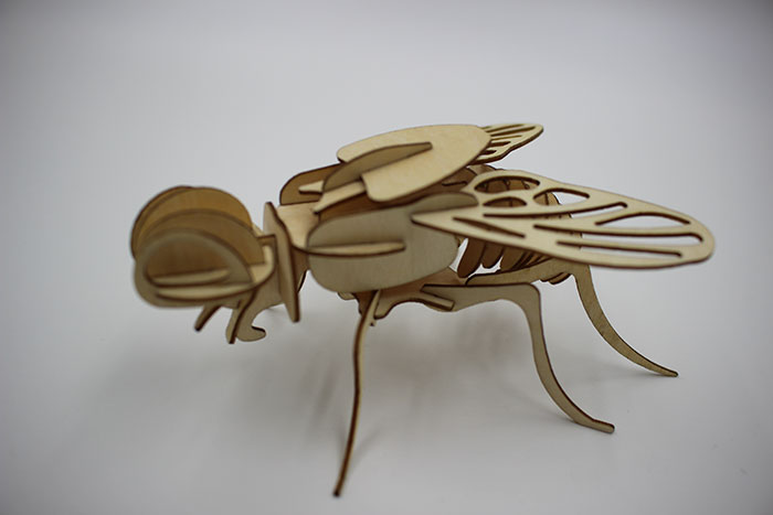 wood fly laser cutter